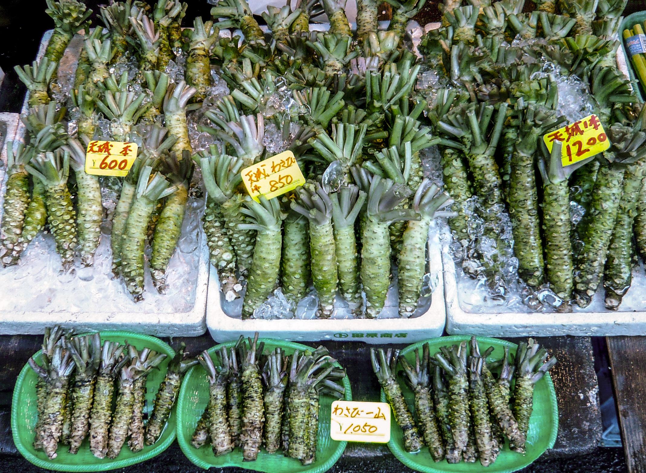 wasabi-root